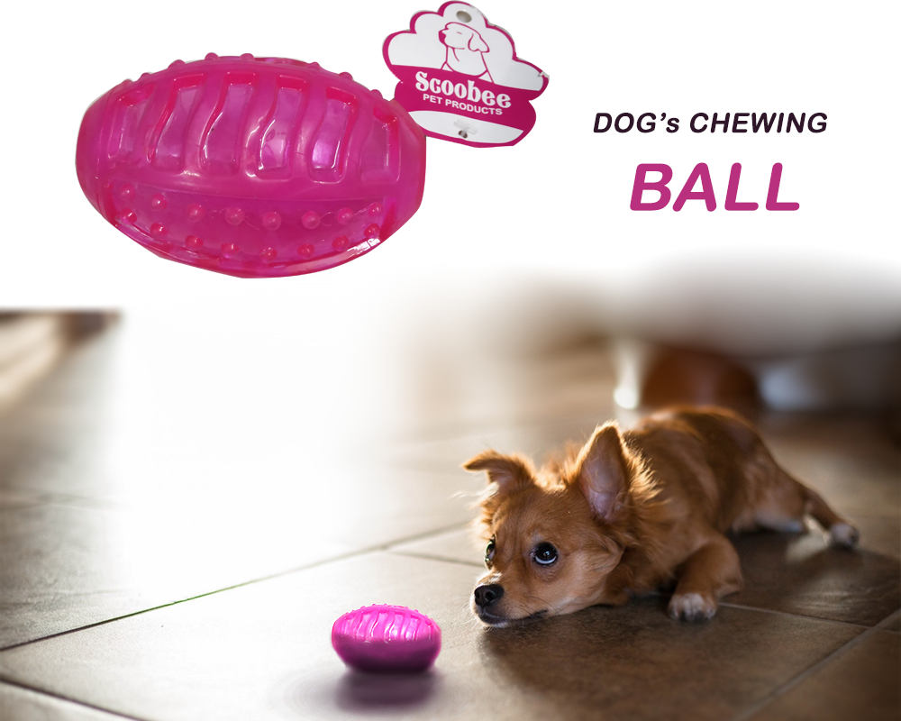 Chewing Ball Toy - Pet Chum