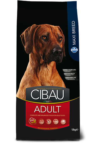 CIBAU ADULT MAXI - Pet Chum