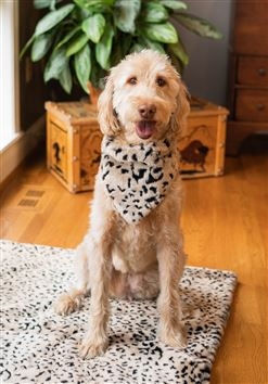 Pet Bandana Cheetah Medium