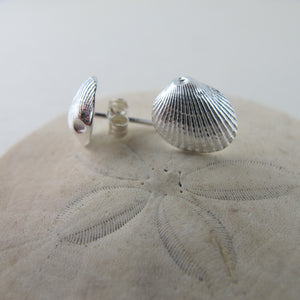 Mini seashell imprinted earring studs - Swallow Jewellery