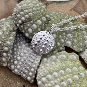 Sea urchin imprinted necklace from Middle Beach, Tofino - Swallow Jewellery