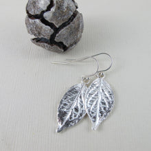 Load image into Gallery viewer, Hydrangea leaf imprinted dangle earrings from Victoria, BC - Swallow Jewellery