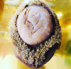 Dried Australian Abalone (Available IN STORE only)