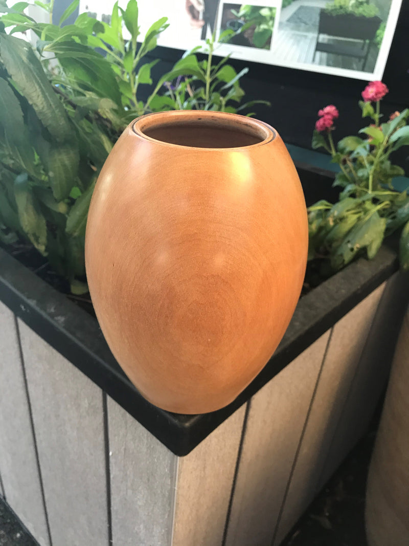 Kauri Vase - Hollow Form