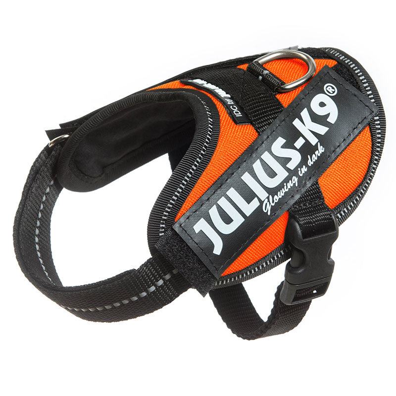 JULIUS-K9® IDC® Powergeschirr, UV orange