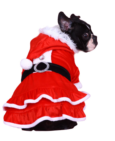 Santa Girl for French Bulldog & Pug