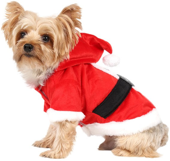 Santa Boy Red Jacket for Small Dog