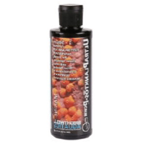 Brightwell Aquatics - UltraPlanktos-P CWM - 250ml