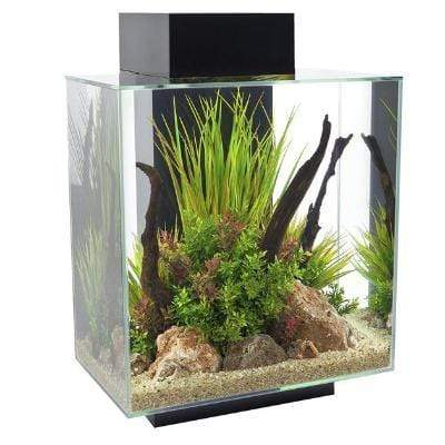 Fluval - Edge 2.0 46L Aquarium Set - Gloss Black