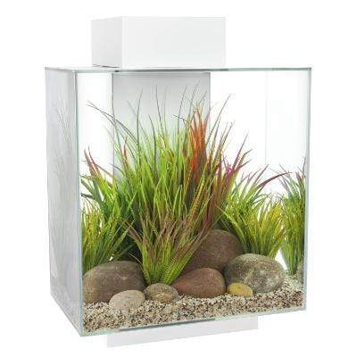 Fluval - Edge 2.0 46L Aquarium Set - Gloss White
