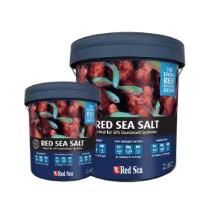 Red Sea - Salt (22Kg)