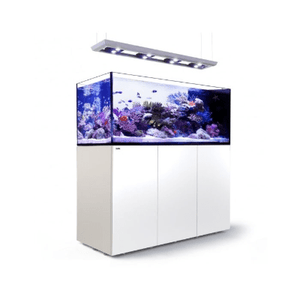 Red Sea Saltwater Red Sea - Reefer Peninsula 650 LED Pendant (4xHydra26HD) - White
