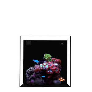 Waterbox Aquariums Product Waterbox - CUBE 4 Aquarium only