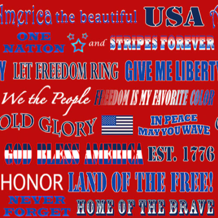 American Truckers-Patriotic Phrases Red 9480-88