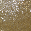 Sequin Embroidered Tulle QUINCY-Gold