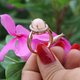 1 Pc Morganite Diamond Ring, Rose Gold Finish 925 Sterling Silver Ring, Pink Morganite Vinatge Ring, Antique Jewelry, RD345