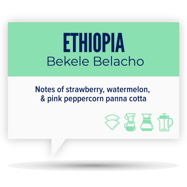 Quietly Coffee - Ethiopia Bekele Belacho 340g