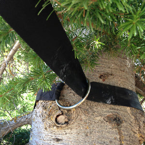 black tree saver around a pine tree