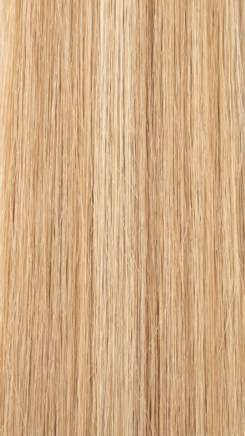 Clip In Hair Extensions: #18/22 Mixed Highlighted Dark Blonde