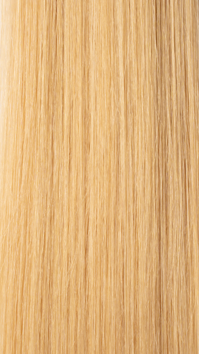 Clip In Hair Extensions: #24 Golden Light Blonde