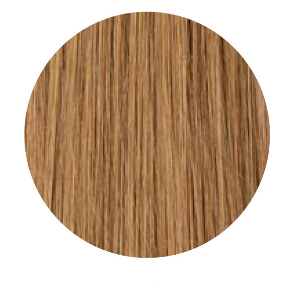Tape In Hair Extensions: #29 Honey Blonde