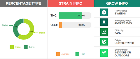 Blue Cookies Strain Infographic