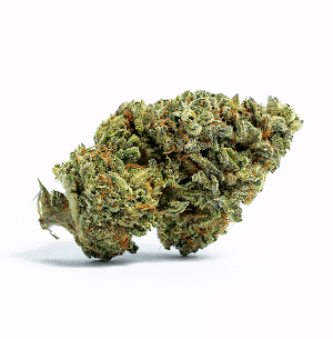 Harvest Dispensary flower