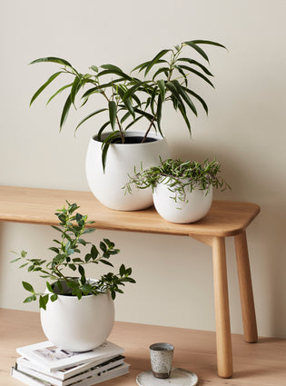 Bower Pot Small Soft White