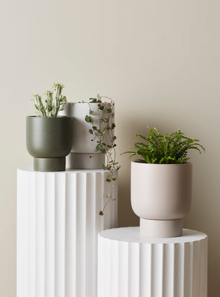 Finch Pot Medium Soft White