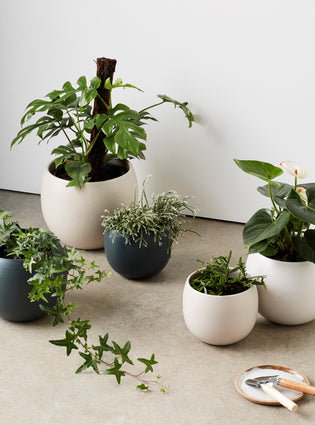 Bower Pot Medium Soft White
