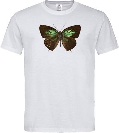 Green Lycaenid Butterfly Unisex Classic Tee