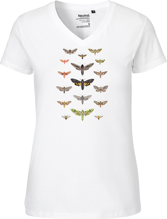 British Hawkmoths Women's V-neck Tee