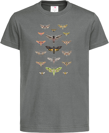 British Hawkmoths Kids Organic Tee