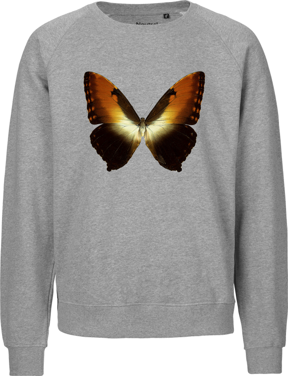 Sunset Morpho Butterfly Unisex Sweatshirt
