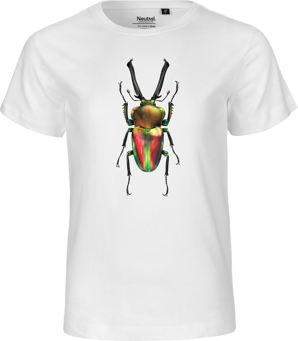 Rainbow Stag Beetle Kids Organic Fairtrade Tee