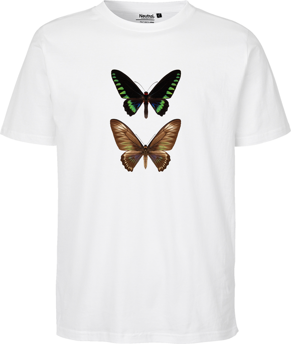 Trojana Birdwing Butterfly Unisex Regular Tee