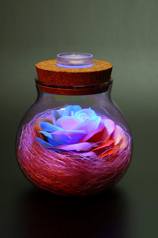 Rose Multi Color Led Light