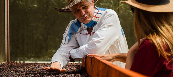 KNOW YOUR COFFEE – What Is Coffee Processing & How Does It Affect Your Coffee's Flavor?