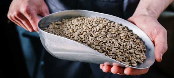 5 Reasons Why Freshly Roasted Coffee Is Better