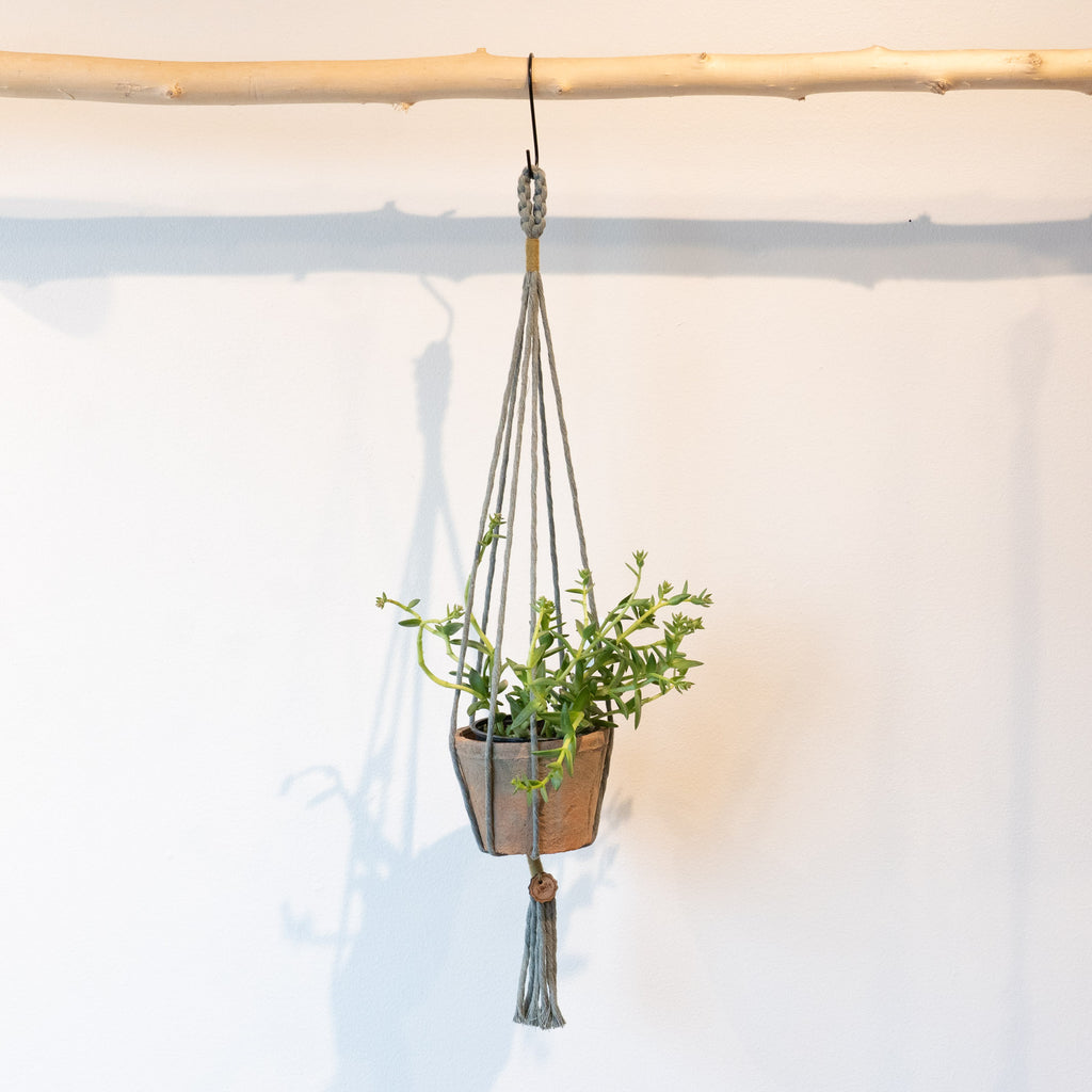 The Knotty Weaver Handmade Macrame Plant Holder - Robin's Egg