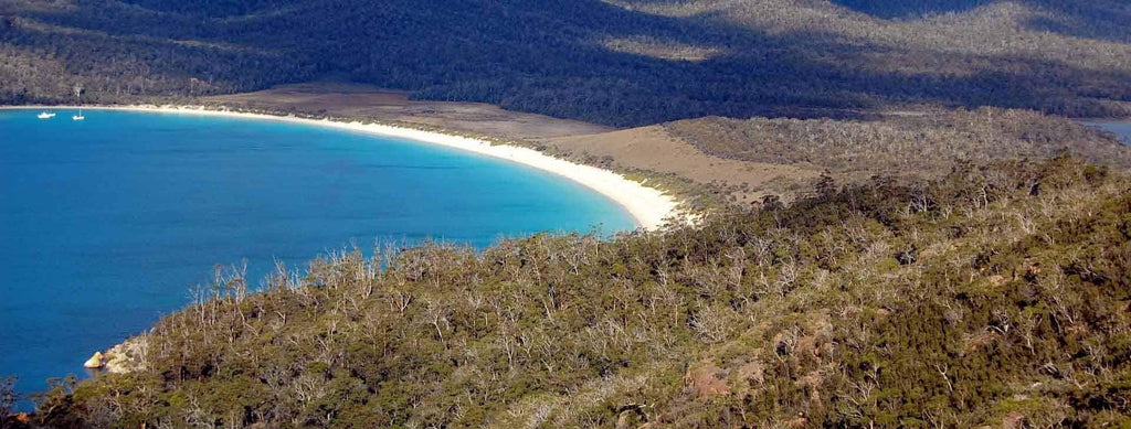 Swimming at Wineglass Bay, Tasmania