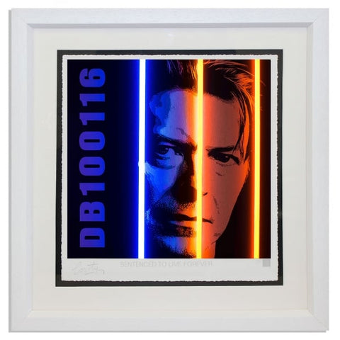 Bowie - Life Series - Courty
