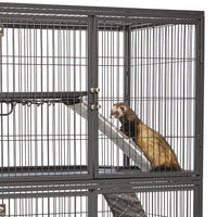 MidWest Homes for Pets Designer Ferret Nation