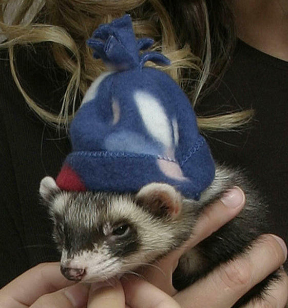 MARSHALL PET FERRET FLEECE WINTER HAT PET HEADWEAR. TO USA