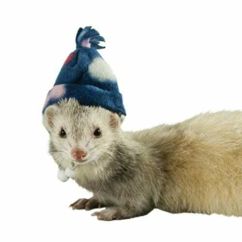 Ferret Fleece Winter Cap