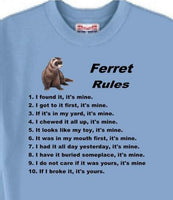 Ferret Sweatshirt - Ferret Rules - Adopt A Cat or Dog - T Shirt Available