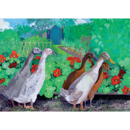 Sheila Smithson - Allotment Ducks