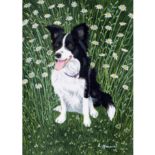 Lucy Howard - Daisy In The Daisies