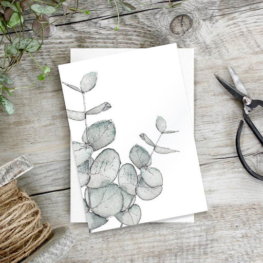 Eucalyptus – Set Of 6 Notecards