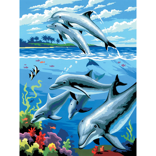 Paint By Numbers Junior small Dolphins